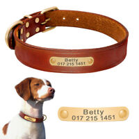 Personalized Dog Leather Collar Gold Name ID Tag Engraved Custom for Small Large