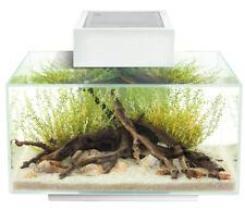 Fluval Edge 2.0 23 Liter - Aquarium Set mit LED- Beleuchtungssystem - Weiß