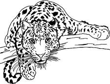 Leopard on a branch large vinyl wall decal