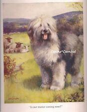 Vintage Dog Old English Sheep Dog With Sheep Herding Gaurdian Art Print 1924