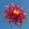 High-quality 3D Lotus Flower Kite Single Line Outdoor Toy Flying for Kids sport