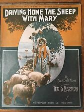 Driving The Sheep Home With Mary Halsey Mohr Ted Barron 1916 rare 11 x 14 sheet
