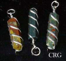 Bloodstone Point Pendant in Silver Plated Spiral (PP13DG)