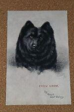 Vintage Postcard: Chow Chow Dog, Maud West Watson, Tucks, 1917
