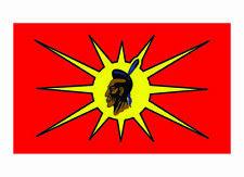 Mohawk Warrior Flag Decal