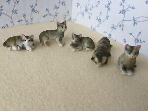 1:12 Scale TABBY CAT/CATS/Kitten/Kittens Dolls House Miniature Pet Animal