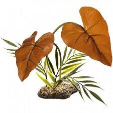 Komodo selva dosel Terrario Reptil Vivero Planta de selva tropical