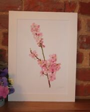 Botanical Giclée Vintage Print (Cherry Blossom) by RHS artist Alfred Wise