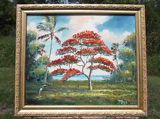 ROYAL POINCIANA TREE Original Oil Painting.Tropical art 20 by 24, GENUINE MAZZ