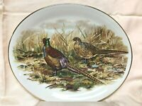 """Liverpool Rd Pottery Ltd~Stroke on Trent England~Pheasants on 10 3/4"""" Oval Plate"""