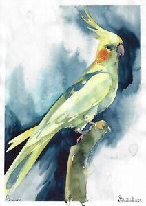 original painting А4 83BD art by samovar watercolor Animal bird parrot