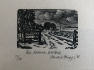 "HOWARD PHIPPS R.E. b1954 Limited Ed WOOD ENGRAVING ""The Avenue, Odstock"" 31/50"
