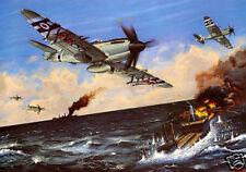 ROYAL NAVY, RAF, Fleet Air Arm KOREAN WAR SEAFIRE, Artist signed print (385)