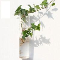 Square Hydroponic Hanging Planter 25cm Nursery Pot Glass Flower Vase Decor