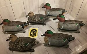 Hard Core Green Wing Teal 6pk Decoys Extreme Life-Like Detail Whaletail Keel sys
