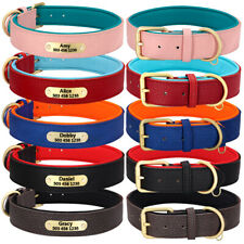 Dog Collar Personalized Leather Padded Puppy ID Name Collats for Small Large Dog
