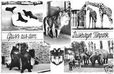 AK, Duisburg, Gruß aus dem Duisburger Tierpark, fünf Abb., 1962