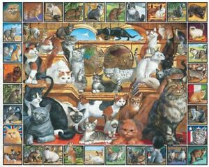 World of Cats 1000 piece jigsaw puzzle 760mm x 610mm (wmp)