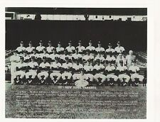 1971 NEW YORK YANKEES TEAM PICTURE - 8 X 10 PHOTO