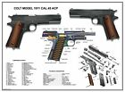 """Poster 13''x19"""" U.S.Army Colt 1911 Cal .45 ACP Manual Exploded Parts Diagram WW2"""