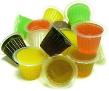 Reptile World Jelly Pots - Mixed Fruit, Beetles, Bees, Parrots, Insect, Gecko