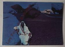 Carte postale Cheik bedouin dans le Sinai , Jean Verame    postcard