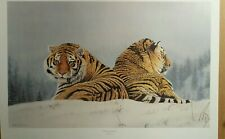 Tigers In The Mist by Michael Demain