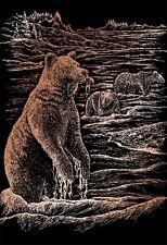 Kratzbild Kratzbilder Grizzly Bär Bär Bären Kupfer Größe 20cm x 25 cm Komplett
