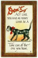 1909 scrawny alley cat with nine lives - A/S Dwig by Tuck