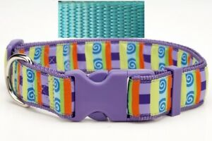 Douglas Paquette WEBBING AQUA Nylon Adjustable Dog Collar, Lead, Harness