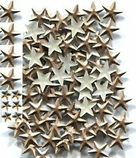 STARS  Rhinestuds  8mm Pearl Color  BROWN  Hot Fix  1 gross