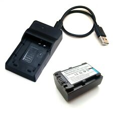 Micro USB Charger + Battery For Sony DCR-SX43 E DCR-SX34 E DCR-SX33 E DCR-SX21 E