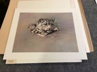 Alan Hunt SNOW LEOPARD Signed Numbered Limited Edition Print