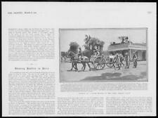 1902 Antique Print - AFRICA South African Police Funeral Brave Trooper  (38)