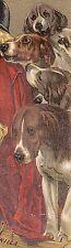 1880's HOODS SARSAPARILLA TRADE CARD, GIRL & MANY HUNTING DOGS, FREE SHIP, TC749