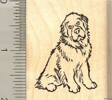 Newfoundland dog rubber stamp G11017 WM