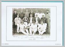 CRICKET  -  UNMOUNTED  CRICKET  TEAM  PRINT  -  SUSSEX  -  1895