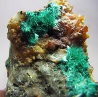 BROCHANTITE BRILLIANT ACIRCULAR GREEN CRYSTALS scattered on QUARTZS from CHILE..