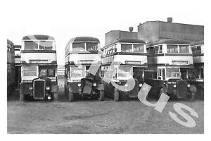 Bus Photograph BIRMINGHAM C.T. 859, 613, 663 & 567