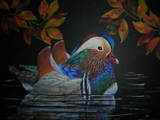 ACEO Mandarin Duck waterfowl bird wildlife Fall print