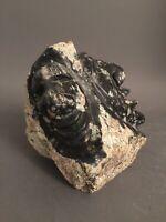 Inuit Eskimo Art Carving Simon Uttaq Faces 66826 * 1998