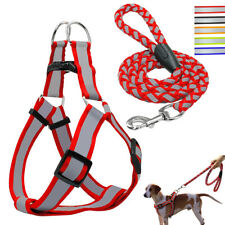 Reflective Step-in Nylon Dog Harness&Leash Pet Puppy Safety Noctilucent Vest SML