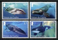 Tristan da Cunha 2019 MNH Whales Fin Killer Whale 4v Set Marine Animals Stamps