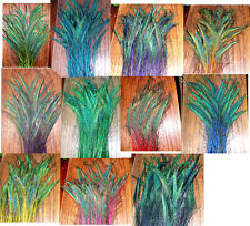"""100 Peacock Sword Feathers 20-25"""" STEM DYED 11 colors available"""