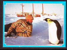 Weet-Bix Antarctic Advanture Card No 3