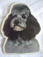 GRAND AUTOCOLLANT - motif chien Tête  CANICHE  GRIS