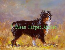 More details for sale australian shepherd signed dog print by susan harper unmounted