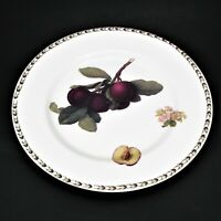Queens The Royal Horticultural Society Hookers Fruit Dinner Plate Plum Blossom