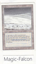 x1 carte Dual land Tropical Island REVISED ENGLISH (1994) EX-NM MAGIC MTG ★★★★