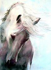 OIL  PAINTING / ON CANVAS  WHITE HORSE PORTRAIT  BRADBERRY  11X14 INCHES
